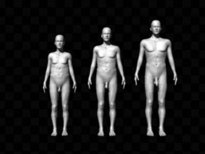 Так выглядели компьютерные изображения, которые показывали женщинам в ходе эксперимента. В центре расположена среднестатистическая мужская фигура, а справа и слева — крайности (иллюстрация Brian Mautz/PNAS).