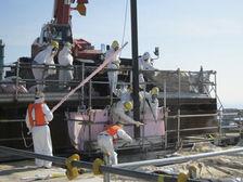 ((фото TEPCO).)