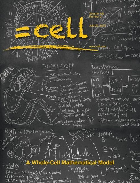Достижение американских учёных удостоилось обложки знаменитого журнала Cell (иллюстрация Erik Jacobsen, Three Story Studio Inc.).