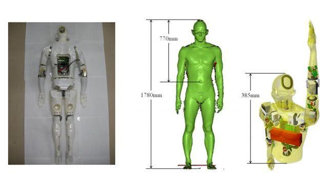 Первый прототип по размеру в два раза меньше среднестатистического пловца, но имеет те же пропорции (фото Tokyo Institute of Technology).