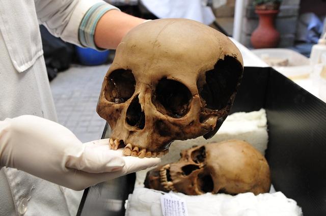 Пять черепов имеют отверстия для подвешивания на стене из черепов — цомпантли (фото Héctor Montaño/INAH).