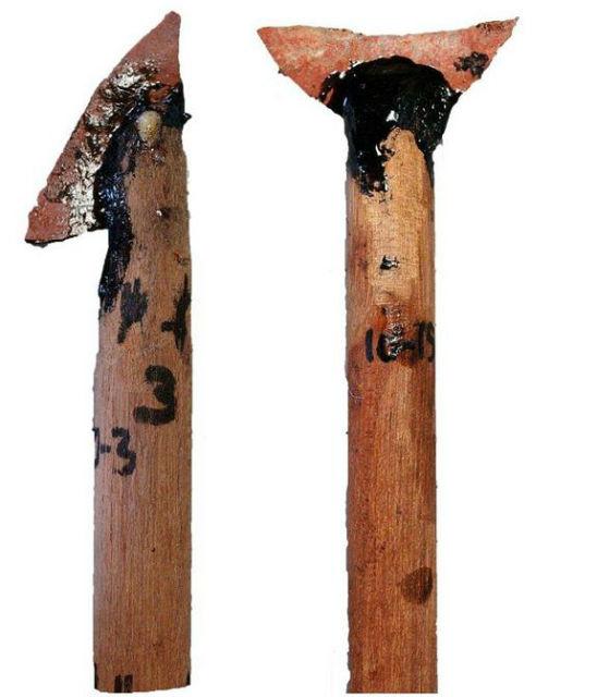 Обнаруженные микролиты могли быть наконечниками первых стрел или же частями копьеметалок. На снимке реконструированные учёными инструменты (фото Benjamin Schoville).