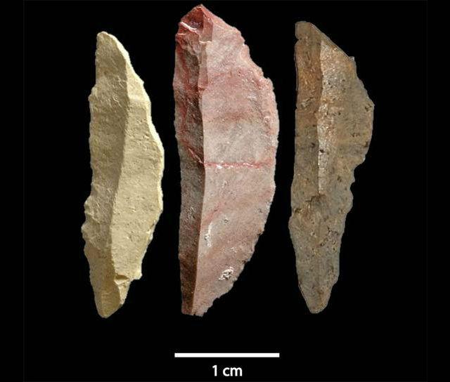 Найденные микролиты были притуплены с одной стороны, чтобы их было проще приклеить к прорезям в дереве или кости (фото Simen Oestmo).