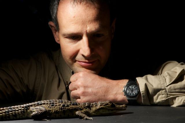 На фото ведущий автор исследования Мишель Милинкович и один из молодых нильских крокодилов, участвовавших в экспериментах (фото Adrien Debry).