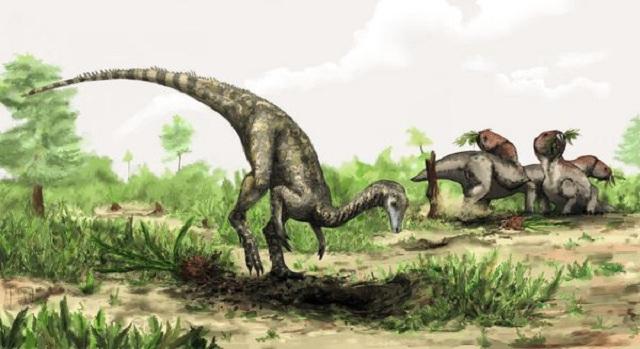 Древнейший динозавр весил всего около 40 килограммов и достигал в длину трёх метров. Один только его хвост простирался в длину на метр (иллюстрация Mark Witton/ Natural History Museum).