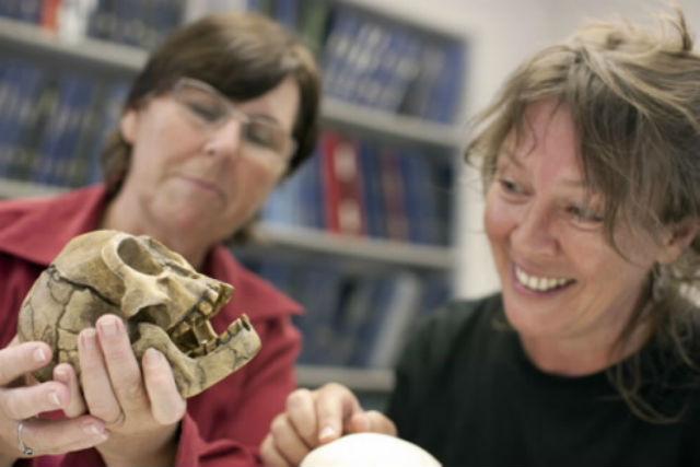 Сьюзен Хейз (справа) с копией черепа флоресского человека (фото Susan Hayes/University of Wollongong).