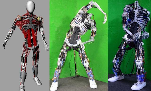 Робот Кэнсиро имитирует тело 12-летнего ребёнка ростом 158 сантиметров и весом 50 килограммов (иллюстрация Yuto Nakanishi/University of Tokyo).