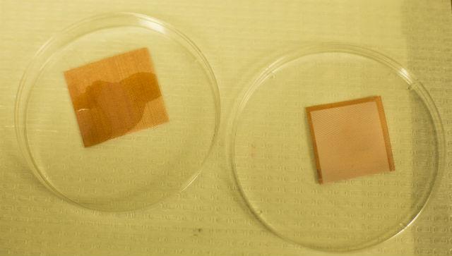 Лист без покрытия промок (слева), а покрытый омнифобным материалом остался сухим (справа) (фото Joseph Xu).