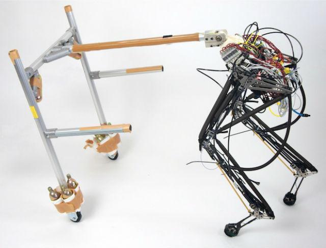 На данный момент для робота-гепарда уже изготовлены задние конечности, в конструкцию которых входят восемь пневматических мышц (фото Andre Rosendo, Shogo Nakatsu, Kenichi Narioka, Koh Hosoda/Osaka University).