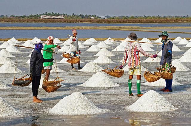 Добыча морской соли в Таиланде (фото JJ Harrison/Wikimedia Commons).