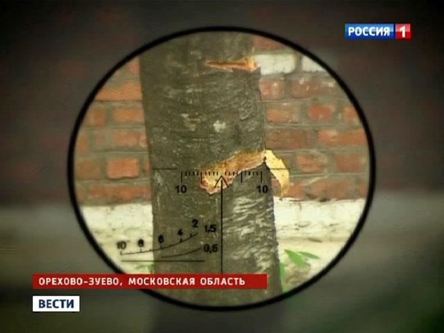 http://cdn1.vesti.ru/p/o_777395.jpg