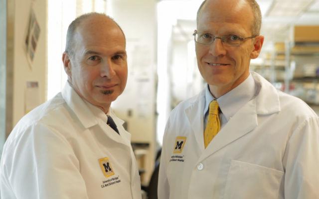 Ведущие авторы исследования Глен Грин (справа) и Скотт Холлистер (слева) из университета Мичигана (фото University of Michigan Health System).