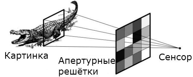 Принцип работы безлинзового фотоаппарата: свет, отражённый от объекта, проходит через сетку жидкокристаллических диодов, а затем попадает на фотоэлектический сенсор. Данные обрабатываются встроенным компьютером (иллюстрация arXiv:1305.7181).