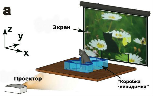 """Схема работы """"коробки-невидимки"""": видео, проецируемое на экран через коробку с кошкой, видно через переднюю грань (изображение Chen et al./Zhejiang University)."""