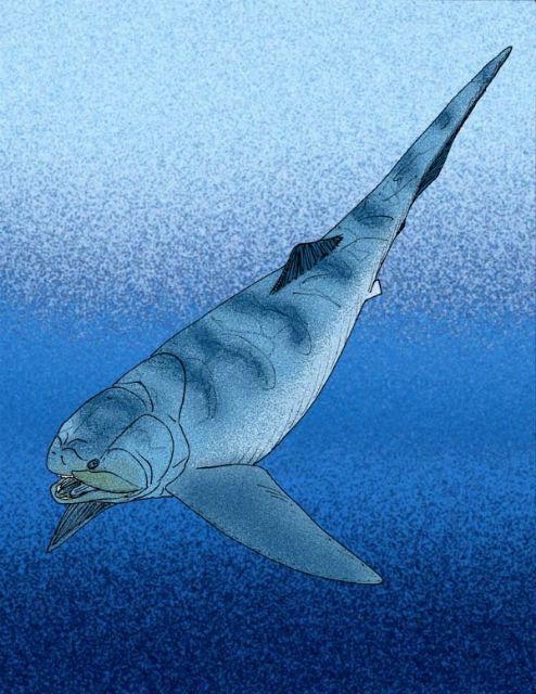 Панцирная рыба в представлении художника (иллюстрация Apokryltaros/Wikimedia Commons).