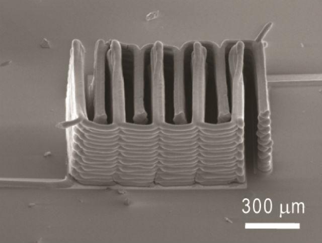 Напечатанная на 3D-принтере структура из анодов и катодов, являющаяся основой микроскопической батарейки. Масштабная линейка − 300 микрометров (фото Ke Sun, Teng-Sing Wei, Jennifer A. Lewis, Shen J. Dillon).
