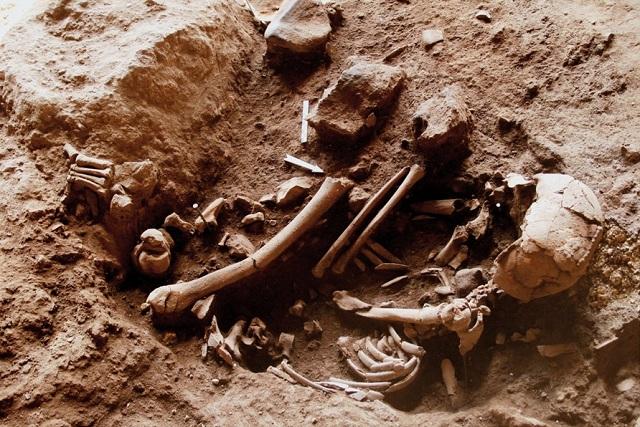 Возраст останков — мужчины и подростка, похороненных на ложе из цветов, оценивается в 13700-11700 лет (фото Dani Nadel, PNAS).