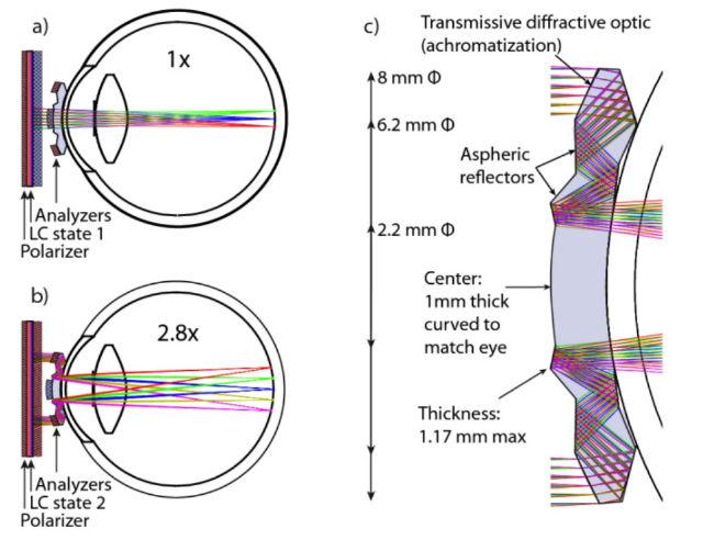 Движение световых лучей внутри контактных линз: (a) обычное, не увеличенное изображение получается при попадании света на центральную часть линзы, (b) изображение, увеличенное при помощи переотражений в 2,8 раза, (c) переотражение лучей (иллюстрация Optic Express).