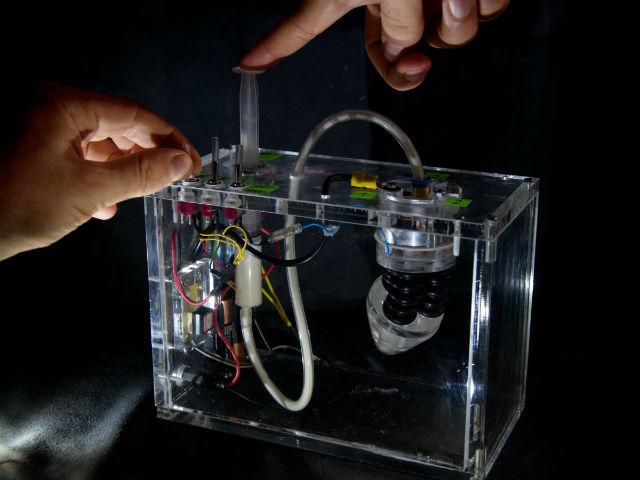 Инженеры создали несколько прототипов своей системы, но признали, что для дальнейшей работы им необходимы данные последних исследований в области биологии и ботаники (фото Plantoid Project).
