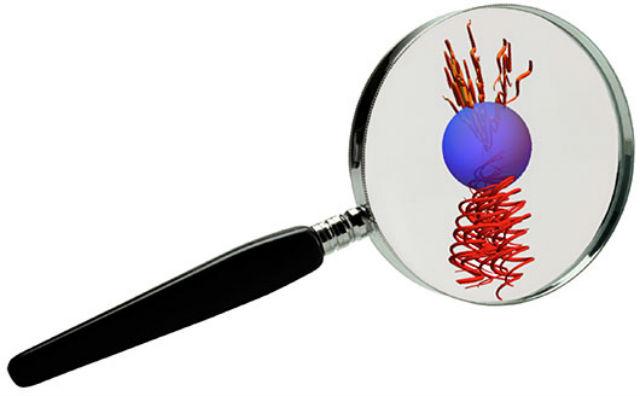 Изменение поляризации лазерного луча придаёт импульс вращения микроскопической сфере (иллюстрация University of St Andrews).