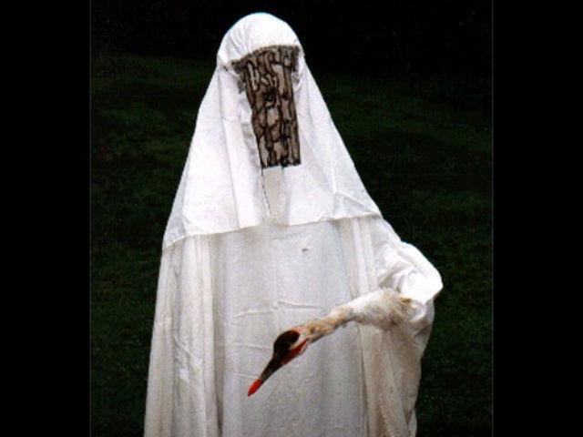 Орнитолог, переодетый в костюм журавля  (фото Carlyn Williamson, USGS Patuxent Wildlife Research Center).