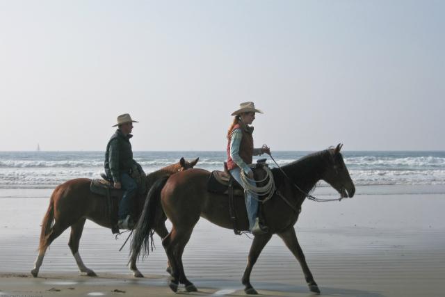 Между лошадью и её постоянным всадником часто развивается тесная связь (фото Mike Baird/Flickr).
