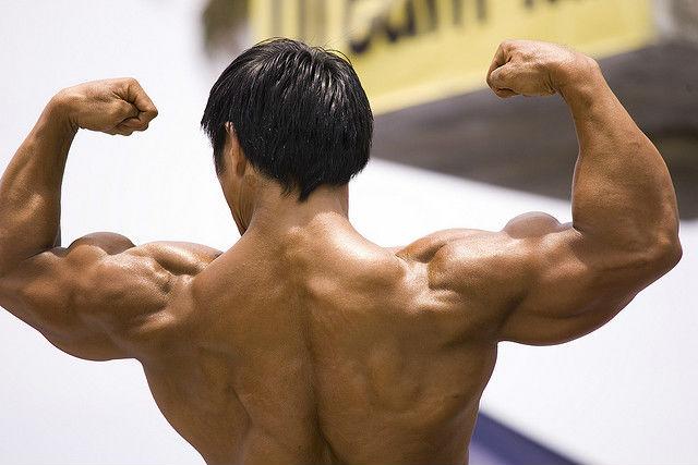 Некоторые люди могут поднять вес, в три раза превышающий их собственный, но не более. Новая искусственная мышца выдерживает до 80 единиц своего веса (фото Lin Mei/Flickr).