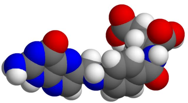 Недостаток фолиевой кислоты сказывается не только на потомстве, но и на последующих поколениях (иллюстрация /Wikimedia commons).
