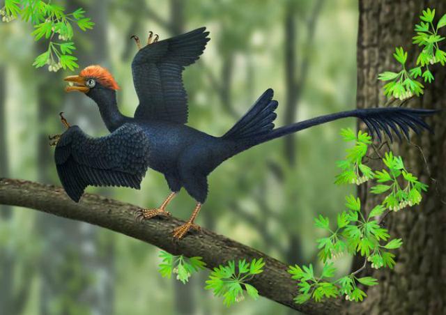 Реконструкция образа джехолорниса, обитавшего на Земле 120 миллионов лет назад (иллюстрация Aijuan Shi).