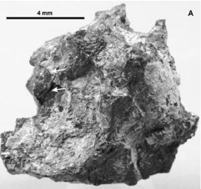 По мнению учёных, находка, сделанная египетским геологом в Ливийской пустыне 17 лет назад, является частью кометы (фото Science Direct).