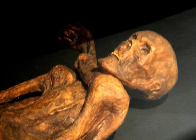 ДНК–экспертиза показала, что 5300-летняя мумия имеет по меньшей мере 19 живых родственников (фото 120/Wikimedia Commons).