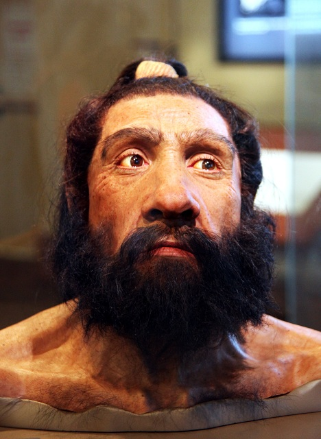Реконструкция внешнего облика неандертальца (фото John Gurche, Tim Evanson/Wikimedia Commons).