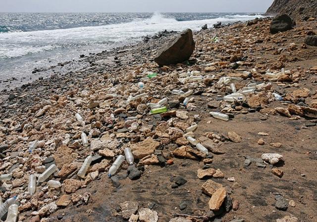 """Из-за сильной загрязнённости Северное тихоокеанское течение получило неформальное прозвище """"северный тихоокеанский мусорный поток""""  (фото Hoshana/Wikimedia Commons)."""