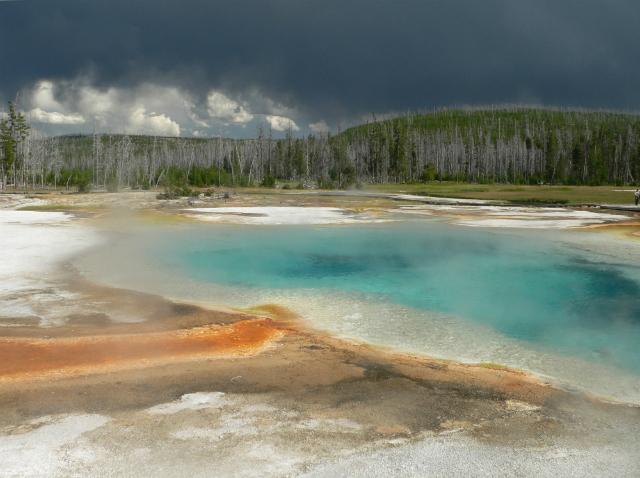 Вирусы способны выжить даже в водах горячих источников. На фото – Большой Призматический источник в Йеллоустонском парке (фото David Monniaux).