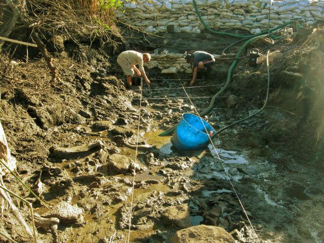Раскопки на месте обнаружения костей гигантского ленивца в Уругвае (фото Martin Batalles).