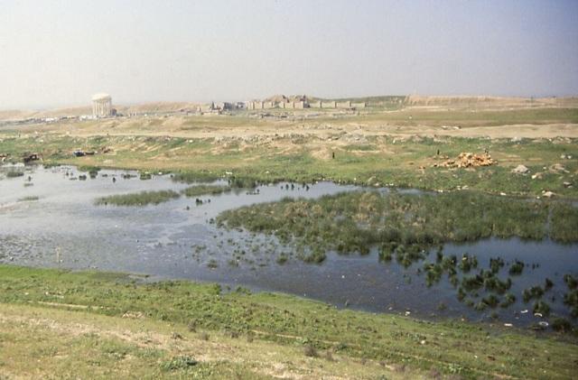 Ниневия располагается на севере современного Ирака в 400 километрах от прежней области поиска садов Семирамиды (фото Fredarch/Wikimedia Commons).