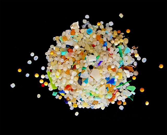 Частицы пластиковых отходов размером менее 5 миллиметров, собранные из песка одного европейского пляжа (фото Nveitch/Wikimedia Commons).