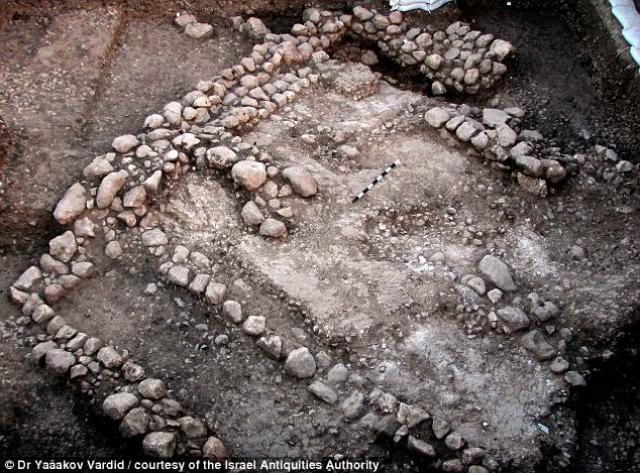Старейшее поселение относится к тому периоду, когда люди только начали приручать животных (фото Isreael Antiquity Authority).