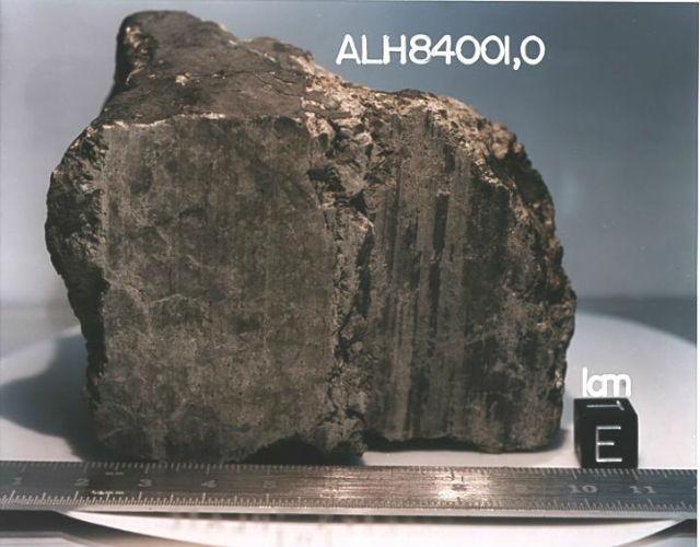 Марсианский метеорит ALH84001, который мог быть переносчиком простейших форм жизни (фото NASA).