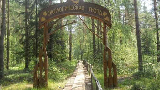 Автор: Увгения Соловьева