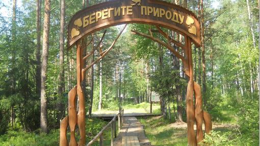 Автор: Евгения Соловьева