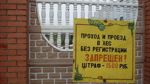Автор: Анна Моисеенко