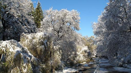 Автор: Река Ольховка. Зима