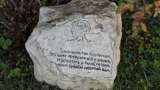 Автор: Афиногенова Анастасия