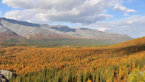 Автор: Осень в Хибинах