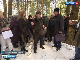 Бреховскому лесу под Одинцовом угрожает вырубка