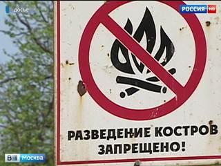 В Подмосковье повышен штраф за разведение костров