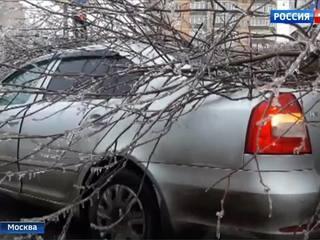 Ледяной дождь в Москве: первые жертвы