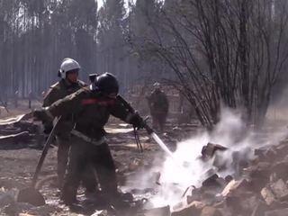 Пожары в Сибири тушат самолеты Минобороны и Авиалесоохраны