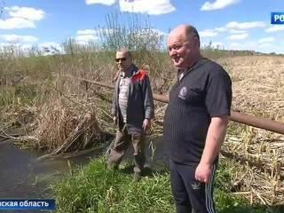 Зловонное болото у озера Сенеж: канализационная катастрофа под Солнечногорском